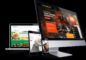 web tasarımı site kurulumu